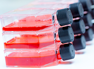 Cell Culture Equipment & Supplies